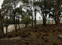 Crookwell Trip with Ken & Hubba (3)